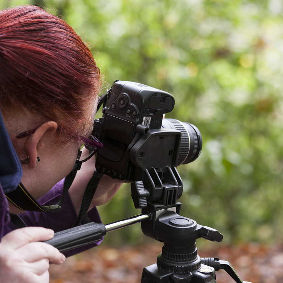 photography training, photography workshops, online photography courses
